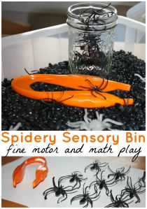 Spider-sensory-bin-fine-motor-and-math-sensory-play