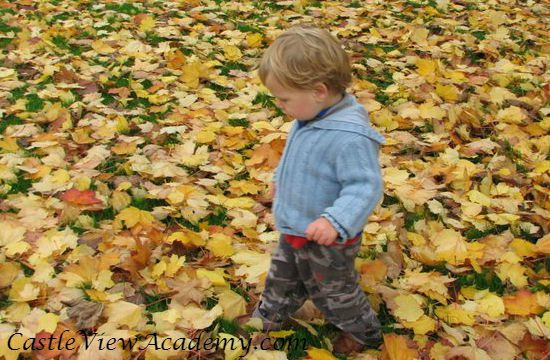 Walking through the leaves is fun when you're young