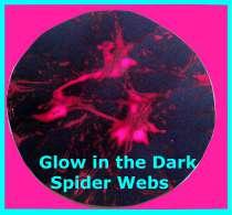 webs Glow in the Dark Spider Webs