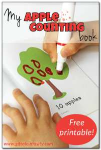 My-Apple-Counting-Book-Gift-of-Curiosity
