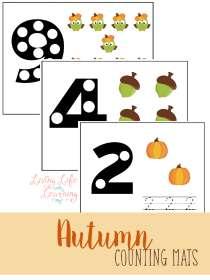 fall-counting-mats