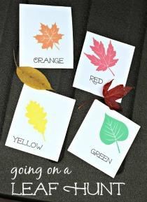 leafhuntcards