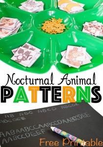 nocturnal-animal-patterns