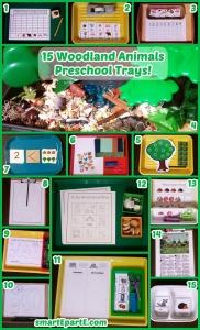 15-woodland-animals-preschool-trays1