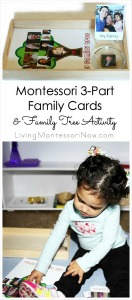Montessori-3-Part-Family-Cards-and-Family-Tree-Activity