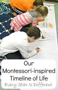 Our Montessori-inspired Timeline of Life