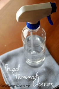 Frugal-Homemade-Cleaners