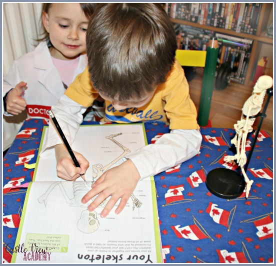 Getting famililiar with the parts of the skeleton, Castle View Academy - Copy