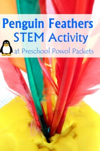 penguin feather science stem activity