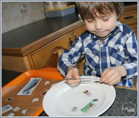Stamp collecting is a great way for children to learn about the world at CastleViewAcademy