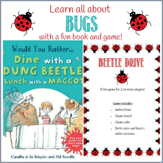 Learn all about bugs with a book and game