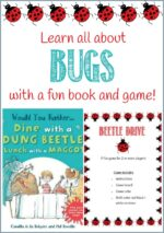 Beetle Drive Game & A Fun Bug Book