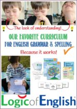 Learning English Spelling and Grammar in Detail Can be FUN! {Review}