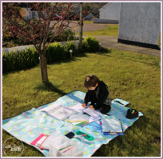 When you homeschool you can take advantage of beautiful days under the cherry blossoms at CastleViewAcademy