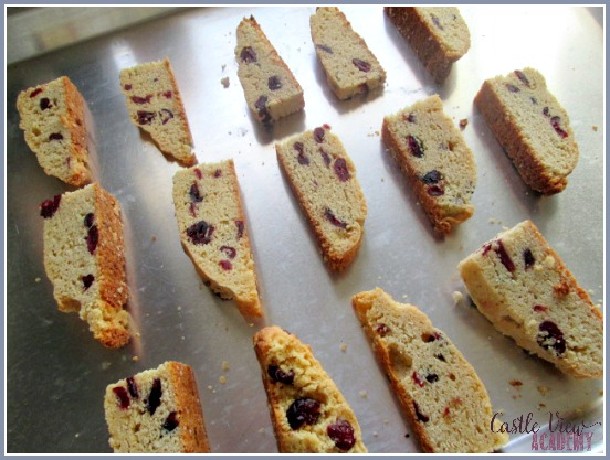 Wren's Vanilla Lime Cranberry Biscotti, hot out of the oven and ready to eat! Castle View Academy's newest favourite tea break treat