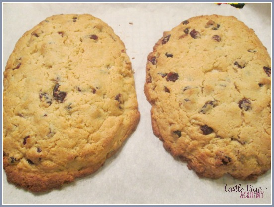 Wren's Vanilla Lime Cranberry Biscotti is almost done! A delicious treat to go with your coffee