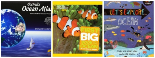 Books about the ocean for kids at Castle View Academy