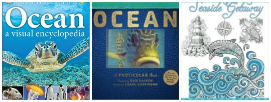 Ocean books for kids at Castle View Academy