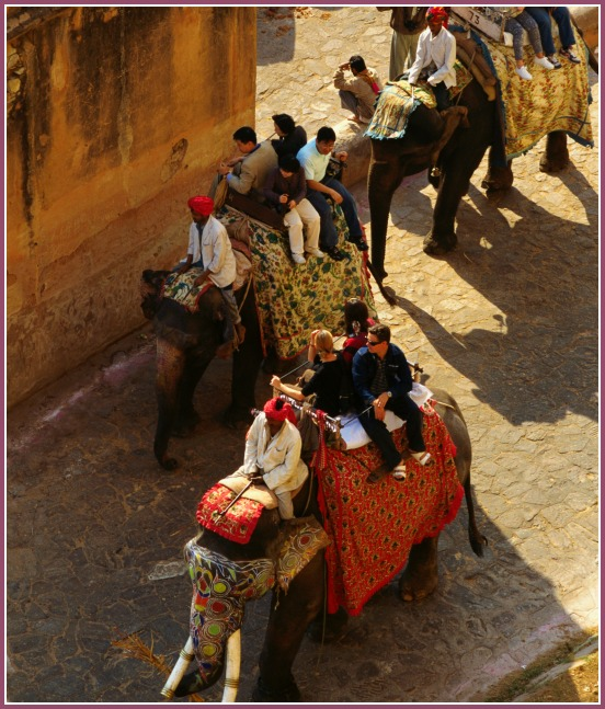 Tourists on Elephants in Jaipur with kids