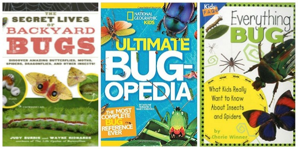 Books about backyard bugs at Castle View Academy