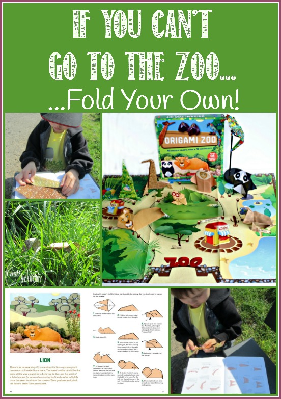 If you can't go to the zoo, fold your own with Tuttle Publishing. This is just what Castle View Academy has been doing at home and at the camp ground!