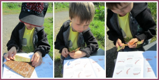 Taking origami outdoors at Castle View Academy