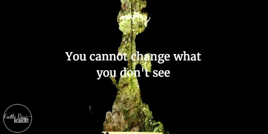 You cannot change what you don't see. Parenting Styles advice on Castle View Academy