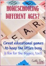 Great Educational Baby Games To Use While Homeschooling Older Kids