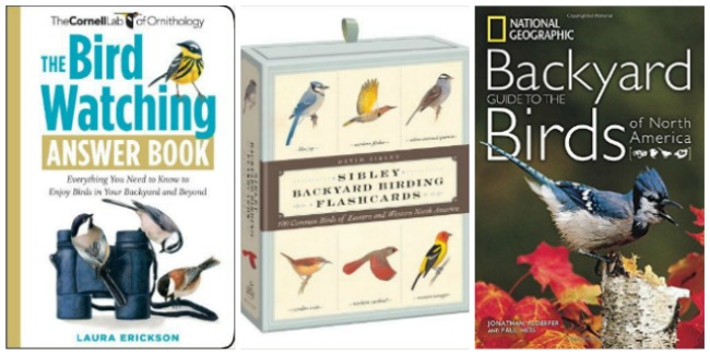 birdwatching books for kids at Castle View Academy