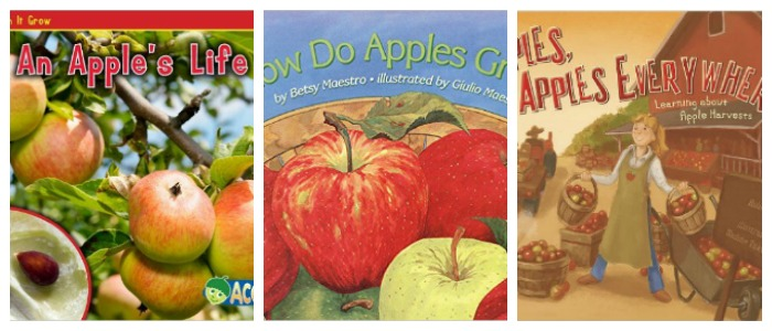 How do apples grow, learning about apples, books at Castle View Academy
