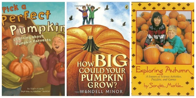 pumpkin-books-at-castle-view-academy