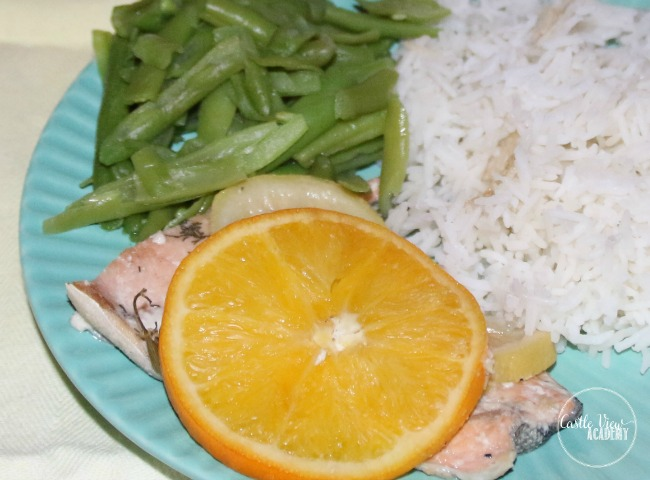 Castle View Academy has Citrus Salmon from MyFreezEasy