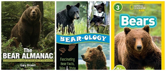 Books about bear facts at Castle View Academy homeschool