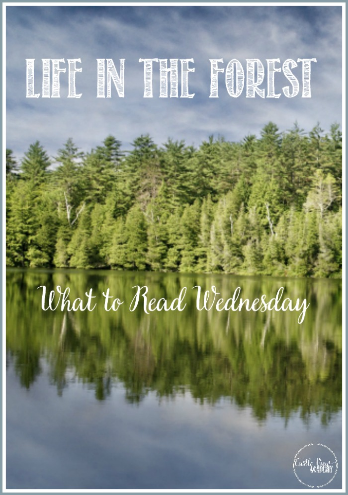 Books about life in the forest for What to Read Wednesday at Castle View Academy homeschool