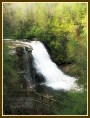 Further west you'll find Wisp ski resort and Swallow Falls State Park in the Deep Creek area of western Maryland