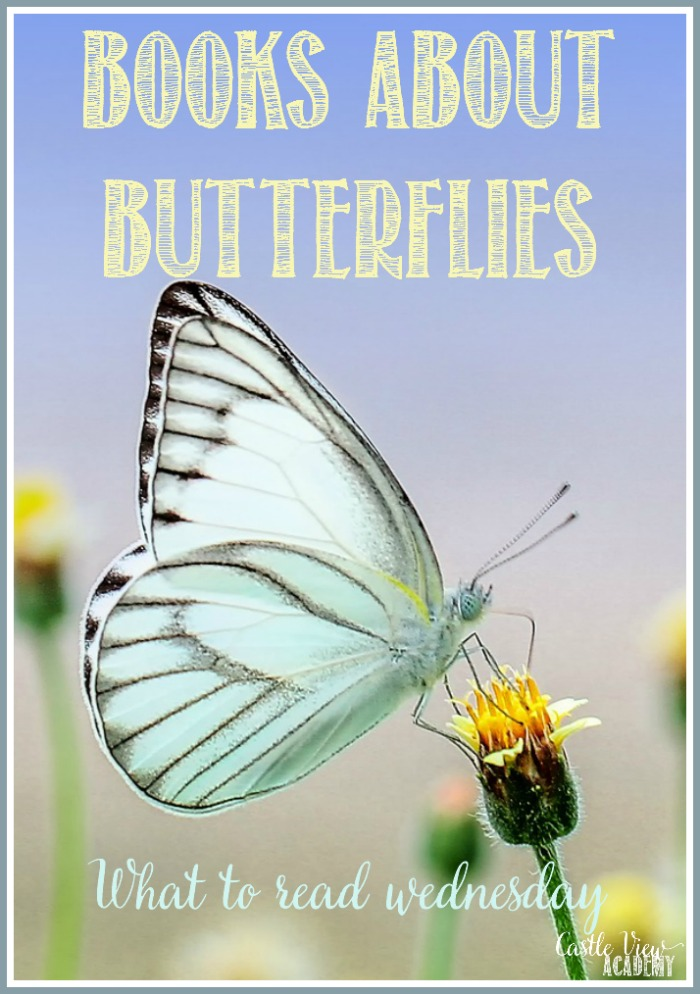 Books about butterflies at Castle View Academy homeschool