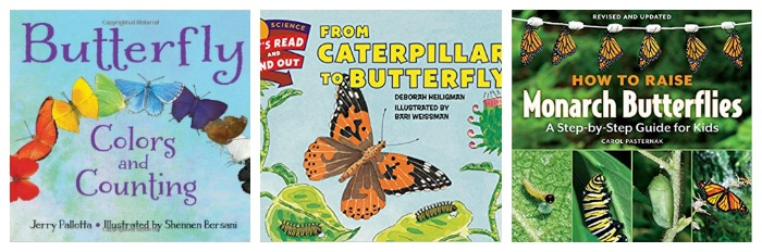 Butterfly books at Castle View Academy homeschool