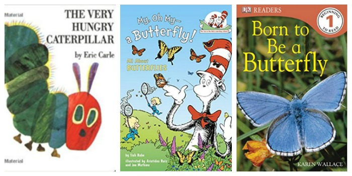 Easy Reader books about butterflies at Castle View Academy homeschool