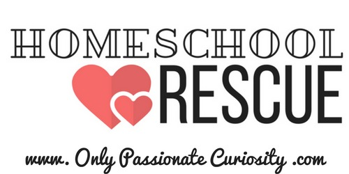 Homeschool Rescue reviewed by Castle View Academy homeschool