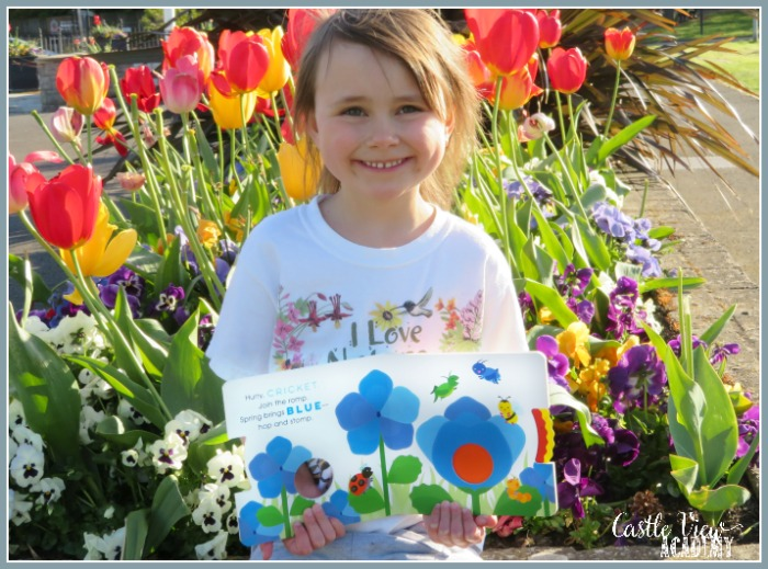 Hooray For Spring! With a color-mixing board book at Castle View Academy by Chieu Anh Urban