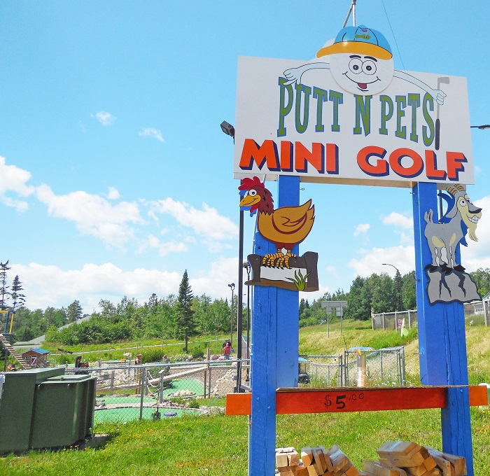 Putt-n-Pets-mini-golf-in-Grand-Marais-MN, , The Wise Owl Factory writes for Castle View Academy homeschool