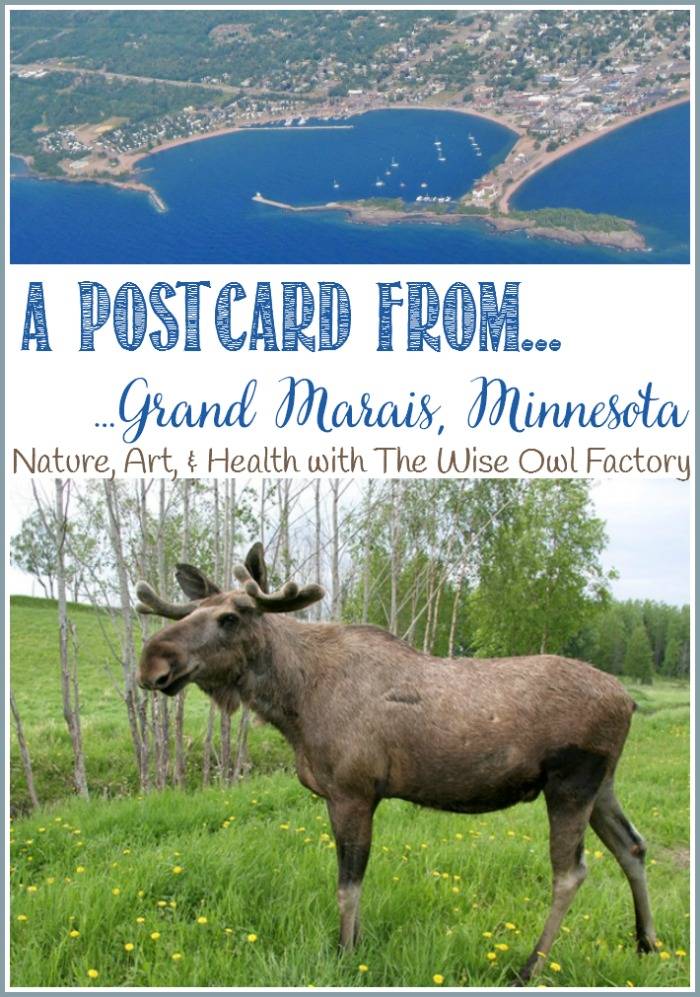 A Postcard From...Grand Marais; Where Nature, Art And Health Are Gold. A guest post by The Wise Owl Factory at Castle View Academy homeschool