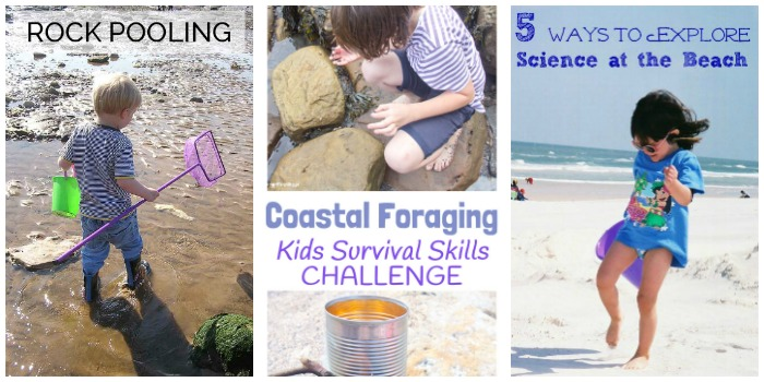 Coastal science for kids at Castle View Academy homeschool