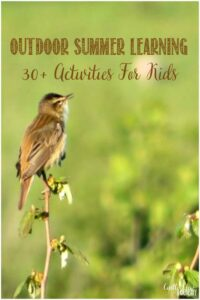 30+ Fun Outdoor Summer Learning Activities For Kids at Castle View Academy homeschool