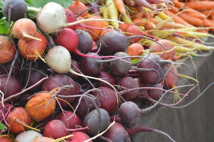 Autumn activities farmer's market