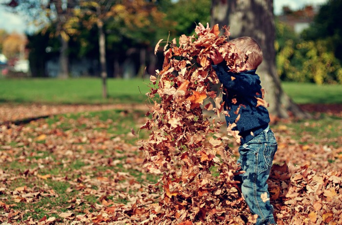Jumping in leaf piles during autumn