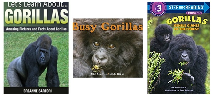 Kids' books about Gorillas at Castle View Academy homeschool
