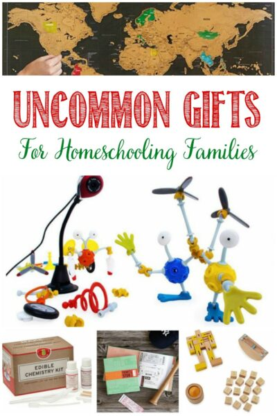 Uncommon gifts for the homeschooling family, Castle View Academy homeschool's wish list
