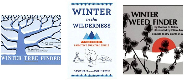 Winter nature study books at Castle View Academy homeschool