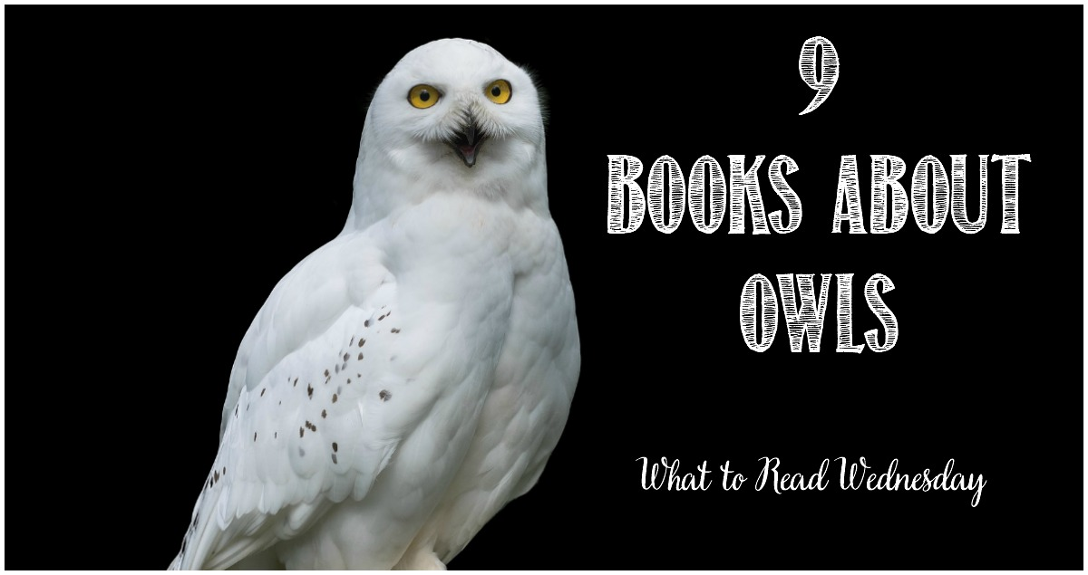 9 books about owls at Castle View Academy homeschool